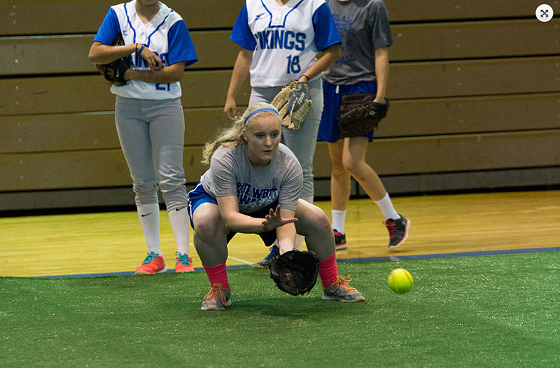 softball turf indoors